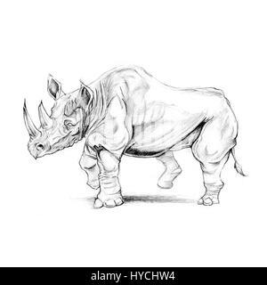 Rhinoceros animal sketch drawing.