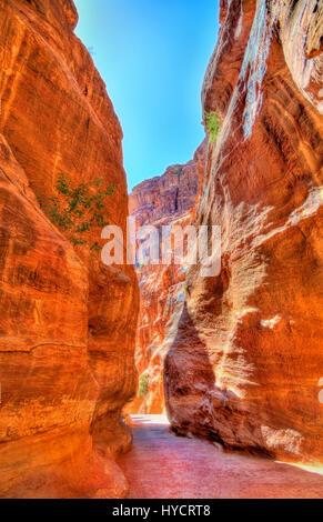 Road inside the Siq Canyon at Petra - Stock Photo