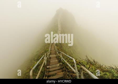 Haiku Stairs is a slippery and secretive hike on oahu - Stock Photo