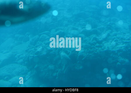Underwater scenery of deep blue ocean - Stock Photo