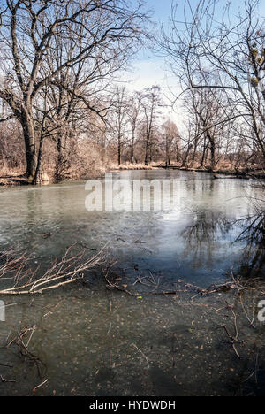 partly frozen Slanaky river lake with trees and blue sky in early spring CHKO Poodri near Studenka city in Czech - Stock Photo