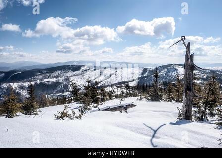 Magurka Radziechowska mountain ridge in Beskid Slaski mountains and Beskid Zywiecki mountain range with Babia Gora, - Stock Photo