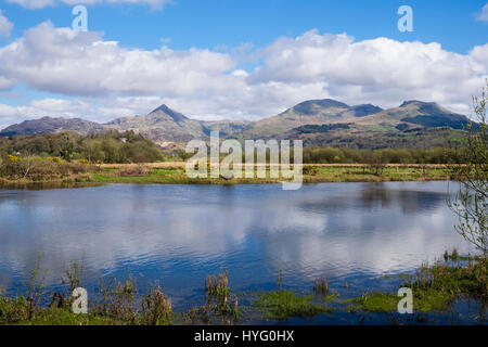 Cnicht, Moelwyn Mawr and Moelwyn Bach mountains in Snowdonia National Park across Afon Glaslyn River. Pont Croesor - Stock Photo