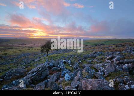 Sunset on Bodmin Moor at Stowes Hill near the moorland village of Minions - Stock Photo