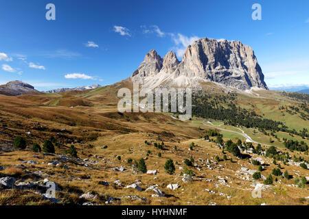 Sassolungo, Val Gardena, Dolomites, Italy. The Sassolungo alp standing over colorful fields during the summer season - Stock Photo