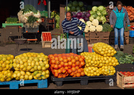 Fresh fruit and vegetables for sale in the historic Central Market (La Vega) in Santiago, capital of Chile - Stock Photo