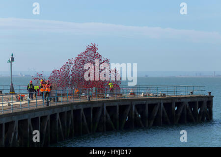 Thames Estuary, Essex, UK. 5th Apr, 2017. 14-18 Now Exhibition of Ceramic Poppies under construction on an old MoD - Stock Photo