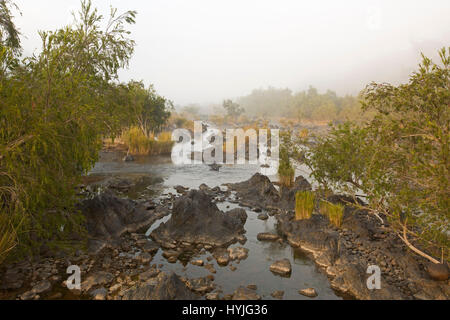 Headwaters of Clarence River with water and rocks hemmed by golden grasses and trees  on misty morning at Coombadja, - Stock Photo