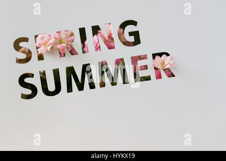 Perforated text on paper card, cutting style, words of Spring, Summer, decorated pink flowers. Copy space . Concept - Stock Photo