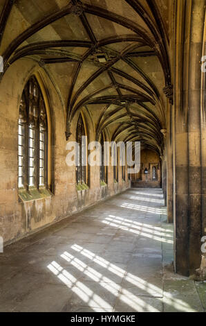 A cloistered walkway in St Johns College, part of the University of Cambridge - Stock Photo