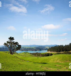 A view over the Coromandel Peninsula in the North Island of New Zealand. - Stock Photo