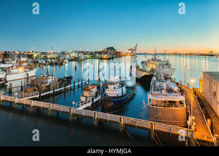 New Zealand's largest port, at Tauranga, Bay of Plenty, with Mount Maunganui, the dormant volcano which dominates - Stock Photo