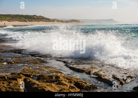 Waves breaking on the rocks and reefs on the coral coast, rolling wave beats on the rock, offshore Western Australia, - Stock Photo