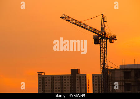 Silhouette Crane on Sunset Background in Thailand - Stock Photo