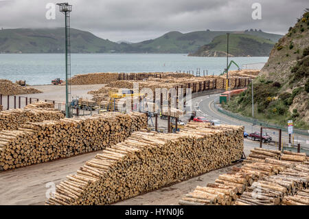 Tree Logs Stacked Up In Port Chalmers Near Dunedin, New Zealand Ready For Loading Onto Cargo Ships For Export - Stock Photo