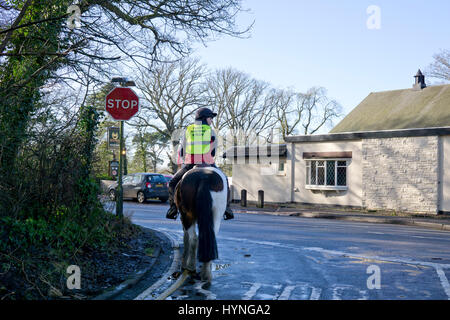 Horse and rider in an English village waiting at a road junction - Stock Photo