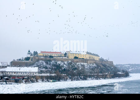 Petrovaradin fortress in Novi Sad, Serbia, in winter  Novi Sad fortress with frozen Danube in front and a group - Stock Photo