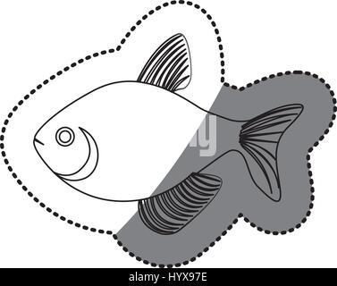 sticker silhouette fish aquatic animal icon - Stock Photo