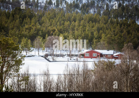 A beautiful wooden house in woods in Norway - Stock Photo