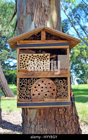 Bee hotel strapped to a tree in Australian parkland. Nesting area built from timber and natural materials to attract - Stock Photo