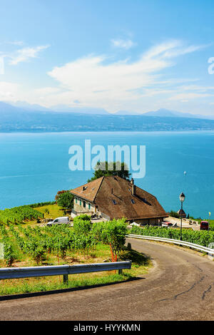 Road leading to Lavaux Vineyard Terraces hiking trail, Lake Geneva and Swiss mountains, Lavaux-Oron district in - Stock Photo