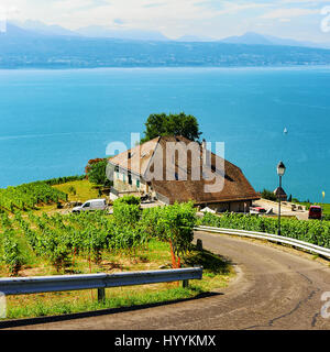 Road leading to Lavaux Vineyard Terraces hiking trail, Lake Geneva and Swiss mountains, Lavaux-Oron district, Switzerland - Stock Photo