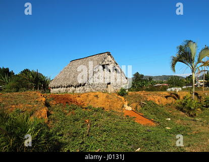 hut for drying tabacco leaves, Vinales Valley, The national park of Vinales,  Cuba - Stock Photo