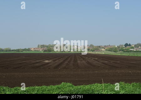 Newly ploughed fields on South Fen with the village of Sutton-in-the-Isle in the background - Stock Photo