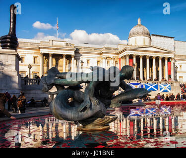 London, UK, 11th November, 2016. Red poppies and wreaths float in fountains at Trafalgar square in front of National - Stock Photo