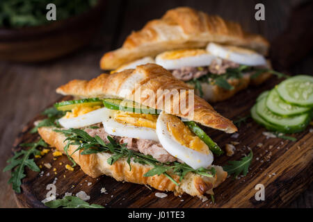 Tuna salad sandwiches with fresh cucumber, hard boiled egg and arugula. Closeup view, selective focus - Stock Photo
