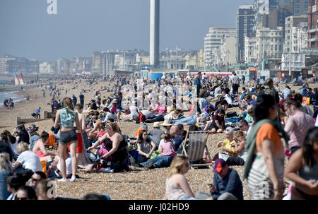 Brighton, UK. 9th Apr, 2017. Brighton beach is packed on the hottest day of the year so far with temperatures reaching - Stock Photo