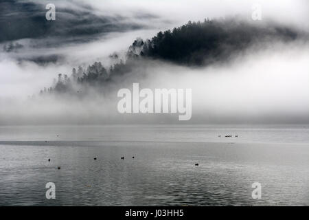 A forested mountainside is cloaked in morning mist beside the Harrison River near the town of Harrison Mills, British - Stock Photo