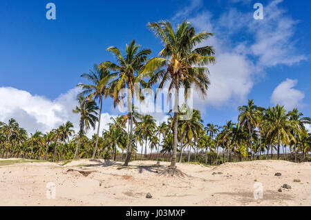 View of the Anakena Beach in Easter Island, Chile - Stock Photo