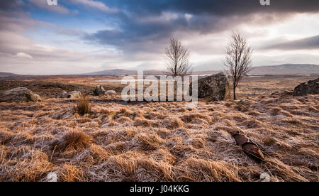Large erratic boulders stand in the vast glacial moraine wetland landscape of Rannoch Moor under the mountains of - Stock Photo