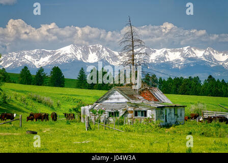 Old Homestead with the Bridger Mountains in the background. - Stock Photo
