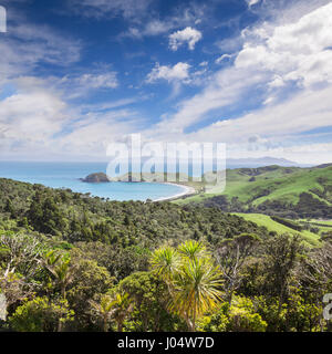 Port Jackson bay, Coromandel, New Zealand. - Stock Photo