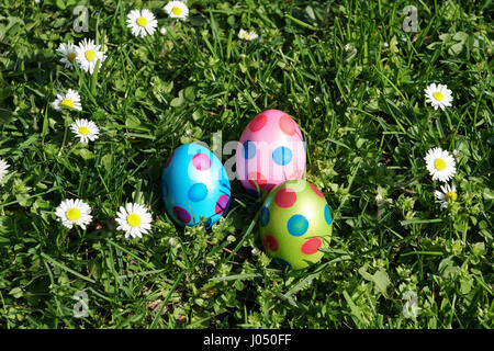 dotted easter eggs and daisy flowers in grass meadow - Stock Photo