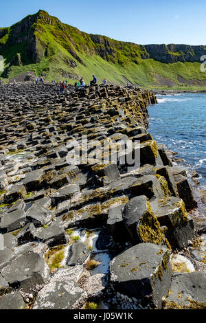 Aird Snout and the Grand Causeway of the Giant's Causeway, Causeway Coast, County Antrim, Northern Ireland, UK - Stock Photo