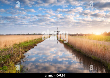 Windmills at sunrise. Rustic spring landscape with dutch windmills near the water canals, yellow reeds and blue - Stock Photo