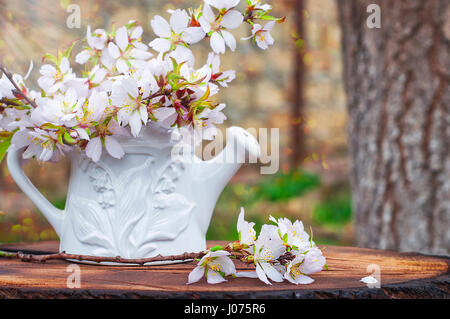 Bouquet Of Flowering Almond Branches In A White Vase On A Tree Stump