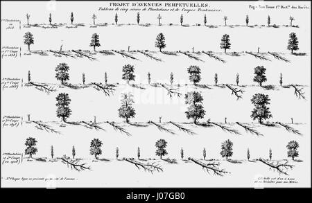 Projet d'avenue perpétuelle 1827 Jacques-Joseph Baudrillart - Stock Photo