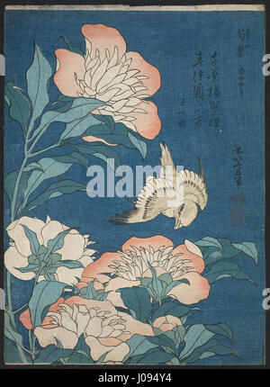 Katsushika Hokusai, published by Nishimuraya Yohachi (Eijudō) - Peonies and Canary (Shakuyaku, kanaari), from an - Stock Photo