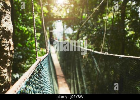 Long elevated walkway through the treetops in rainforest - Borneo, Malaysia - Stock Photo