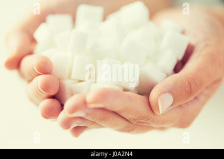 close up of white lump sugar in woman hands - Stock Photo