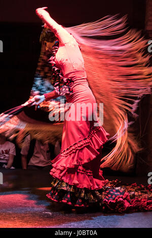 A nightly Flamenco show being performed at the Museo del baile flamenco in the Old Town of Seville, Spain.   The - Stock Photo