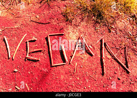 The word 'Vegan' shown as lifestyle graffiti - Stock Photo