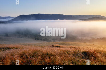 Landcape with sun, meadow, forest and mountain. - Stock Photo