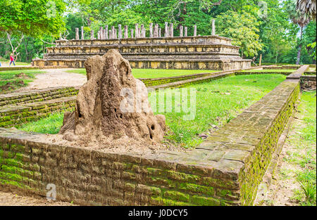 The small termitary in Polonnaruwa archaeological site, with the ruins of Palace Complex of King Parakramabahu on - Stock Photo