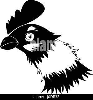 Chicken in black and white - Stock Photo