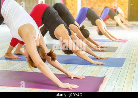Group of young woman practicing during their yoga class in a gym - Stock Photo